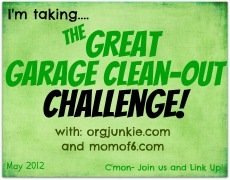 The Great Garage Cleanout Challenge – Part 2