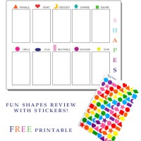 Shapes Review