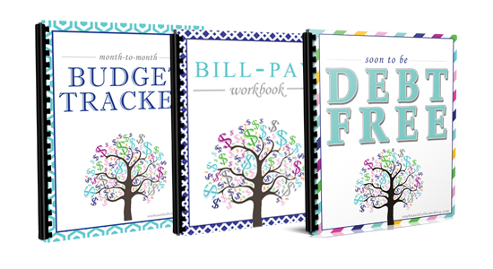 Financial Freedom Workbooks