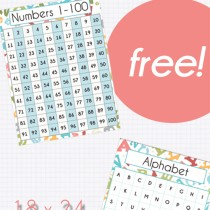 Number and Letter Recognition Posters