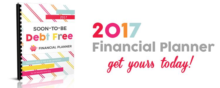 2017-financial-planner