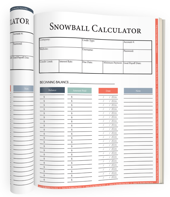 snowball calculator! Absolutely love this workbook! It is changing our financial lives