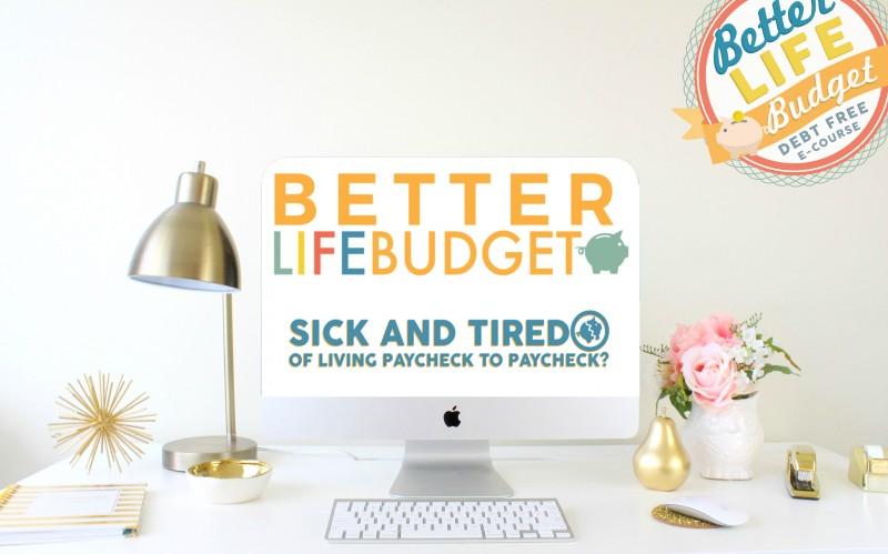 better life budget computer screen