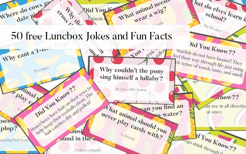 50 Free Lunchbox Jokes